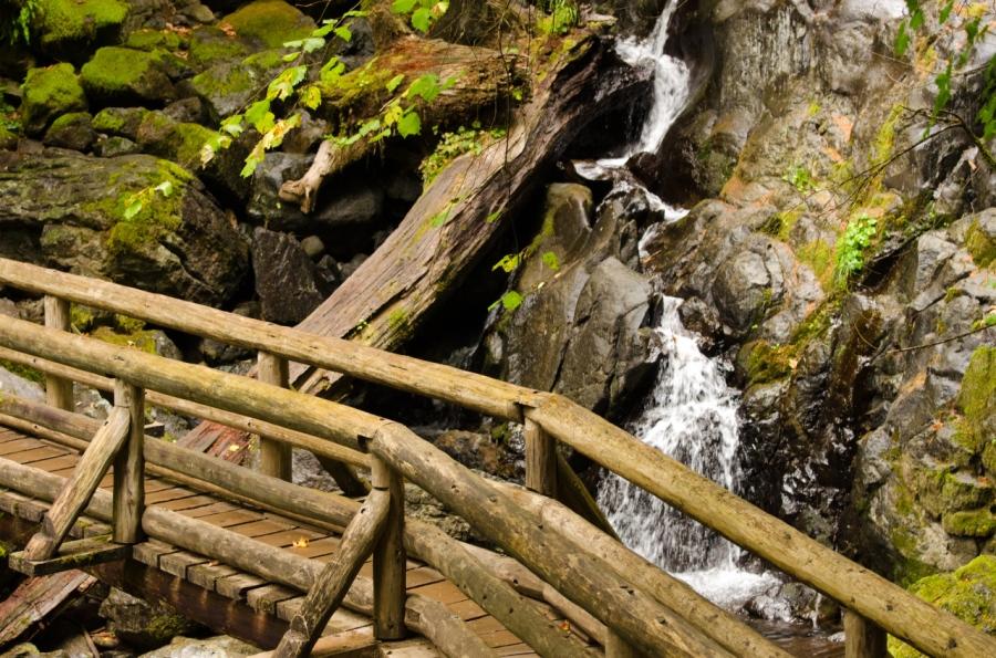 Footbridge below Rodney Falls
