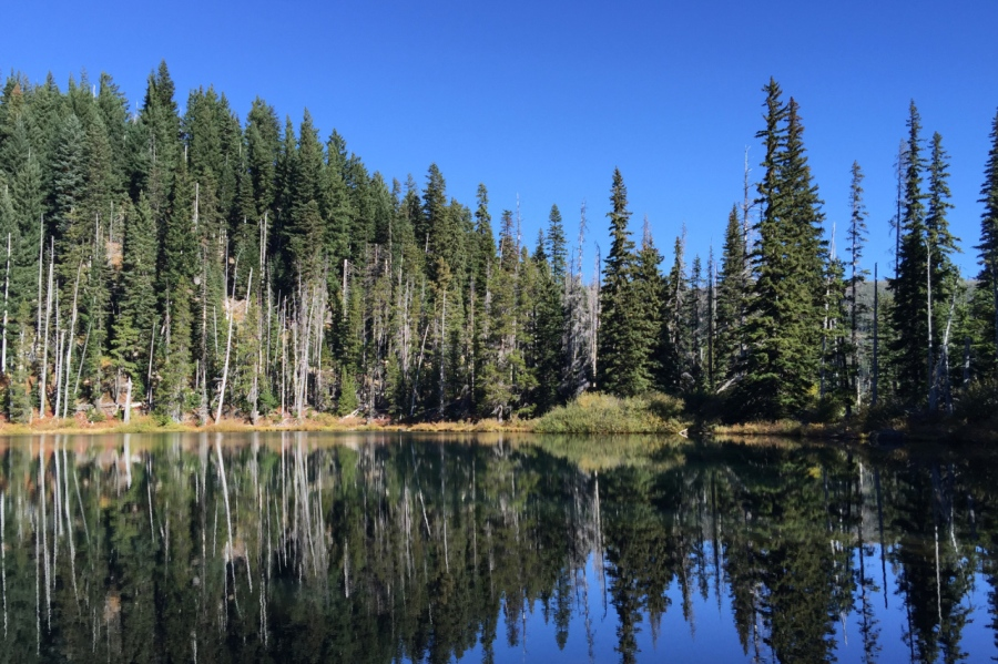 Bucket List of Alpine Hikes in the Pacific Northwest #11: Junction Lake in the Mt. Jefferson Wilderness