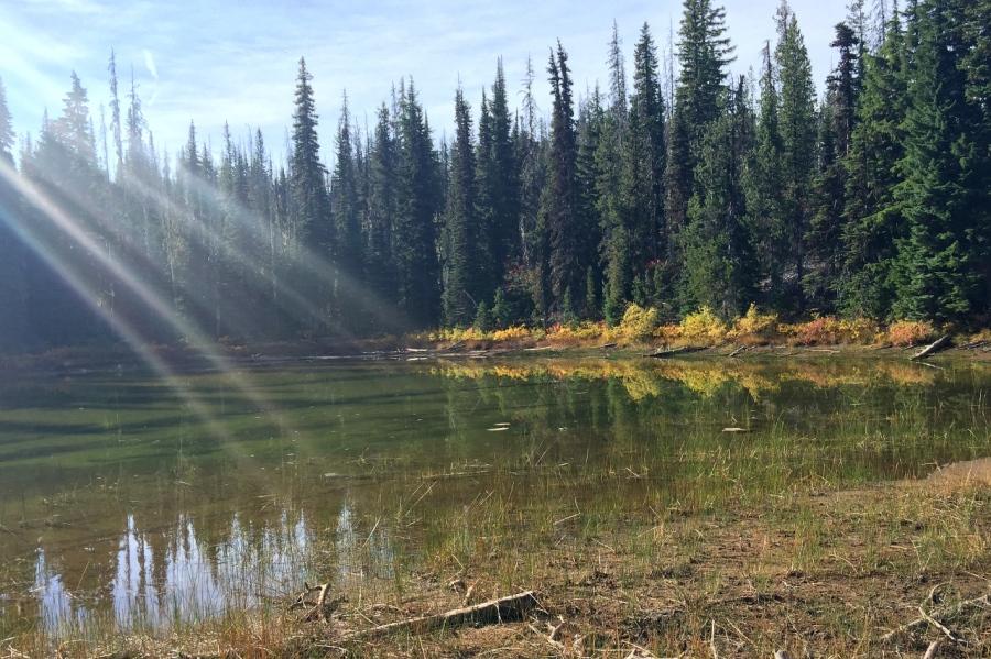 Scott Lake