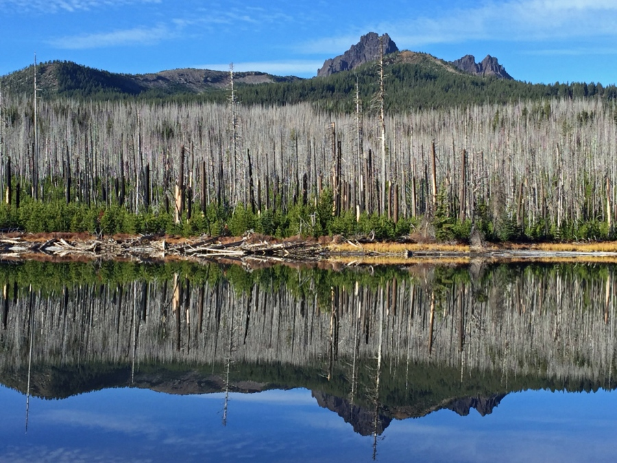 Three Fingered jack reflected in Jack Lake