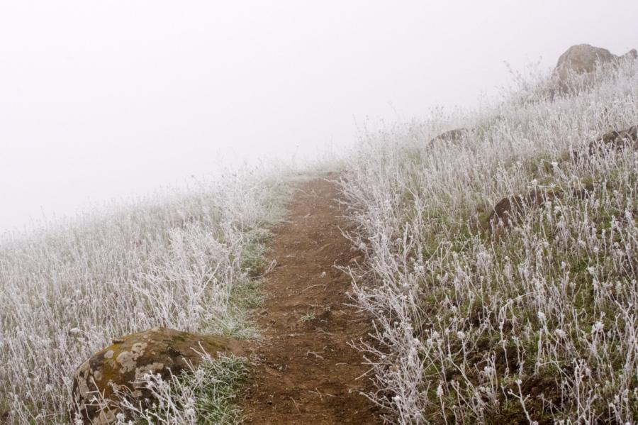 Cold stretch of upper trail