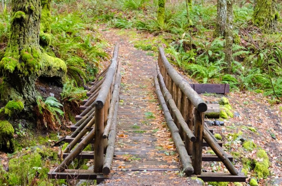 Nice footbridge over Gorton Crrek