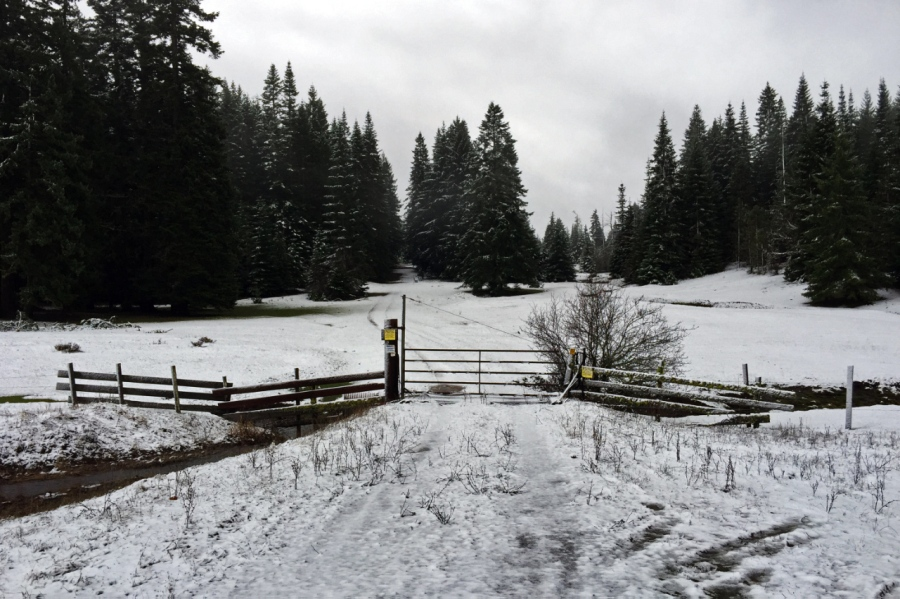 Some snow in the Glenwood area