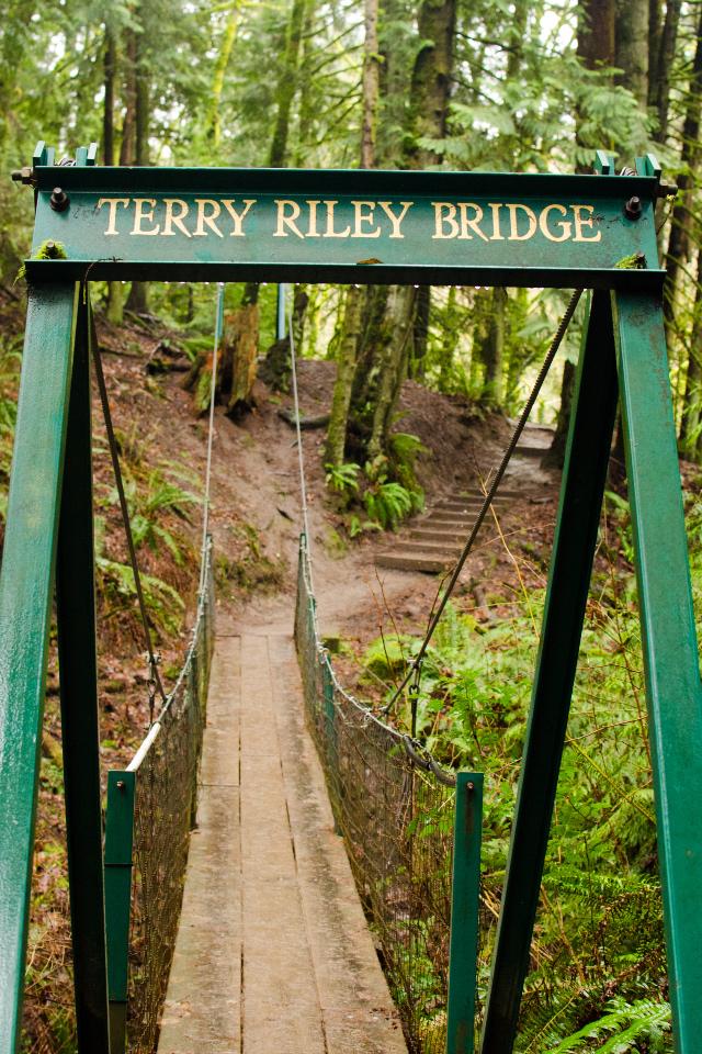 Foot Bridge on Trail