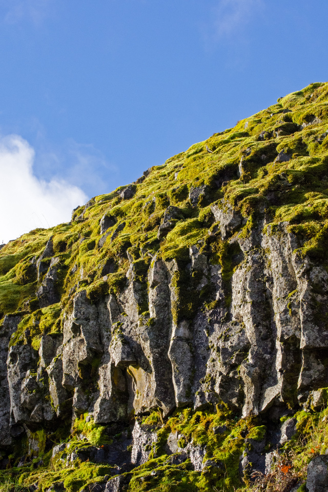 Columnar Basalt forming the cliffs along Catherine Creek
