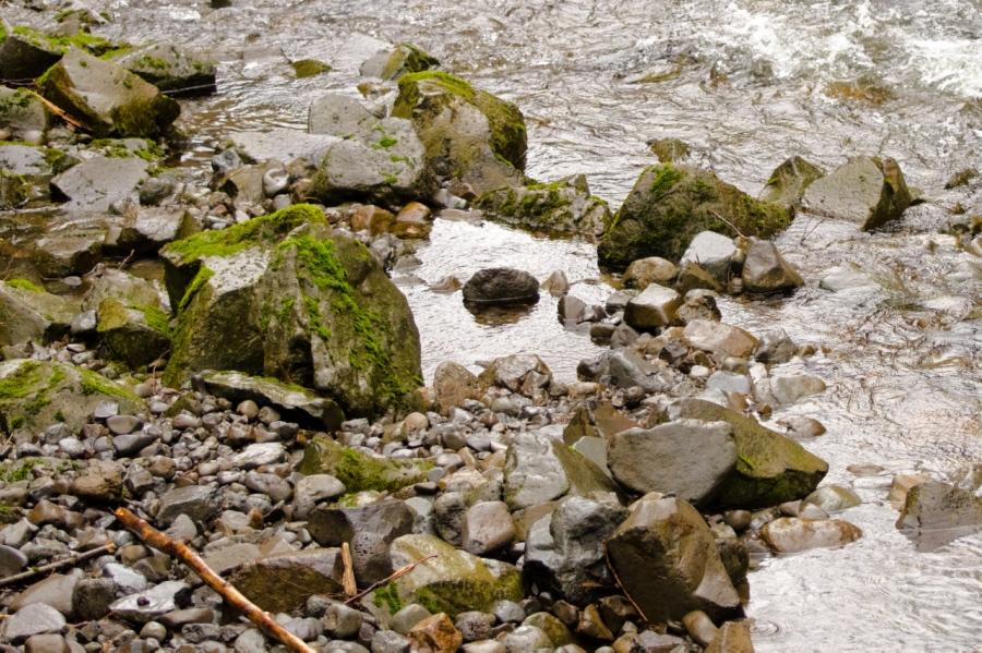 Hardy Creek