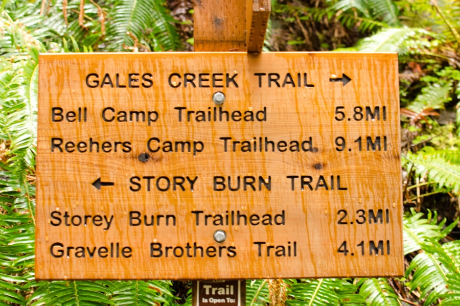 New signpost about one mile from trailhead