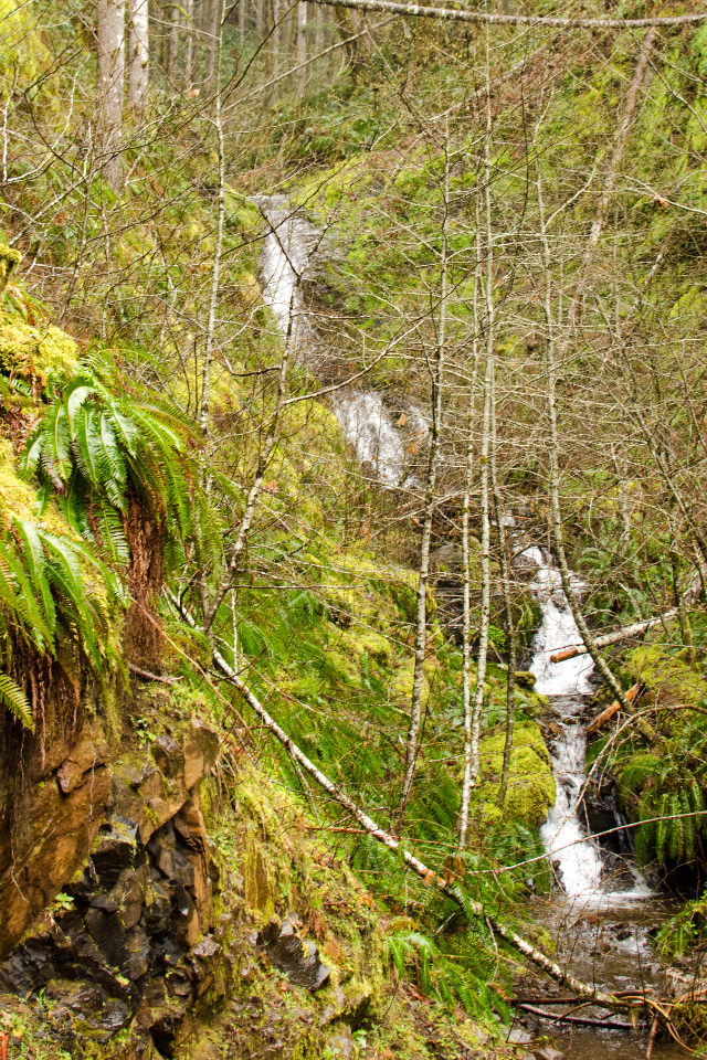 A wispy waterfall along the trail