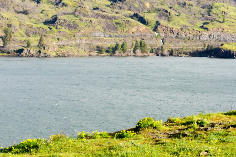 A view across the Columbia River
