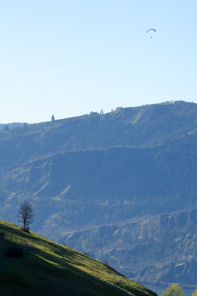 Paraglider way above the Columbia River Gorge