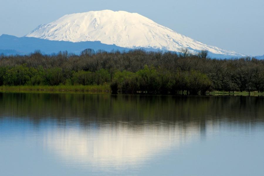 Mt. St. Helens reflected in Sturgeon Lake