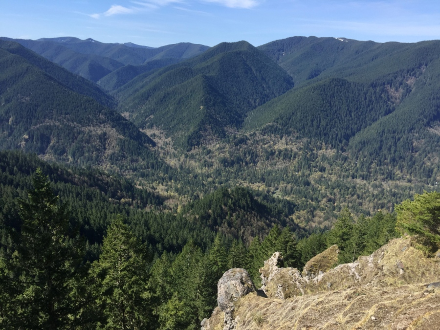 A view of much of the Salmon-Huckleberry Wilderness
