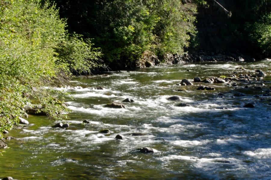 Salmon River near trailhead