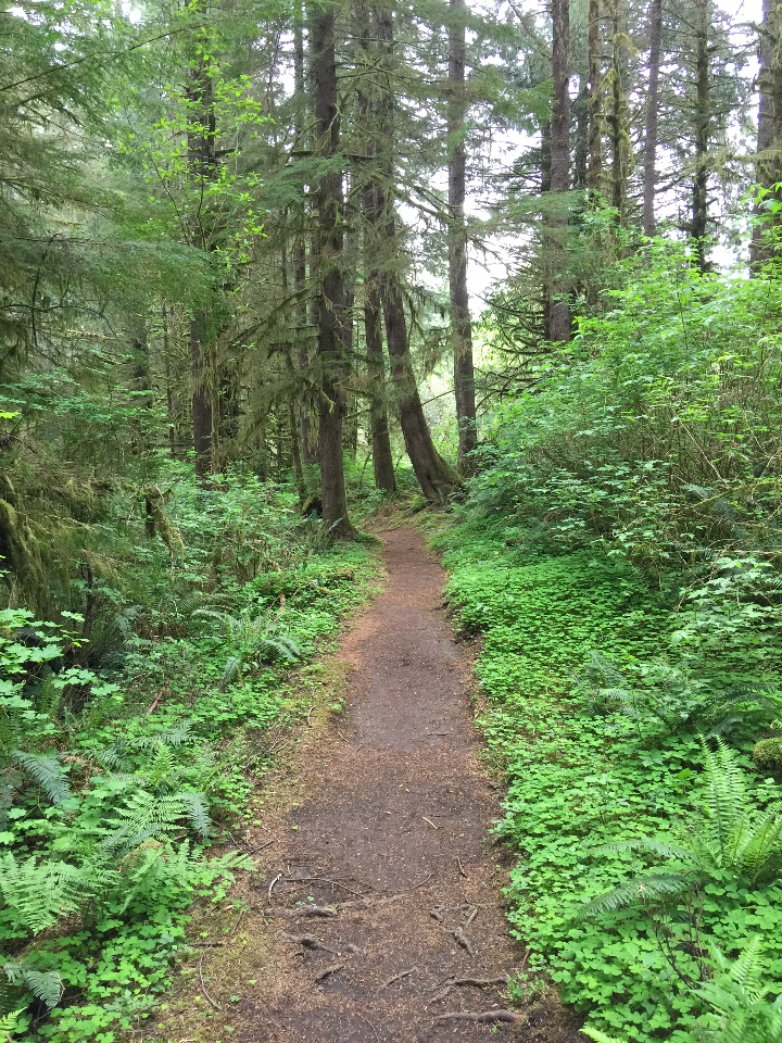 Pleasant section of the trail