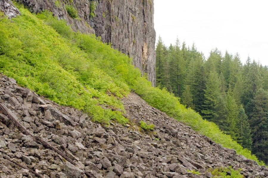 Trail crossing huge talus slope