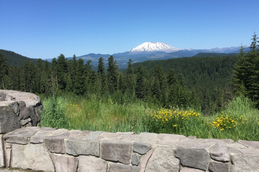 Mt. St. Helens from Oldman Pass