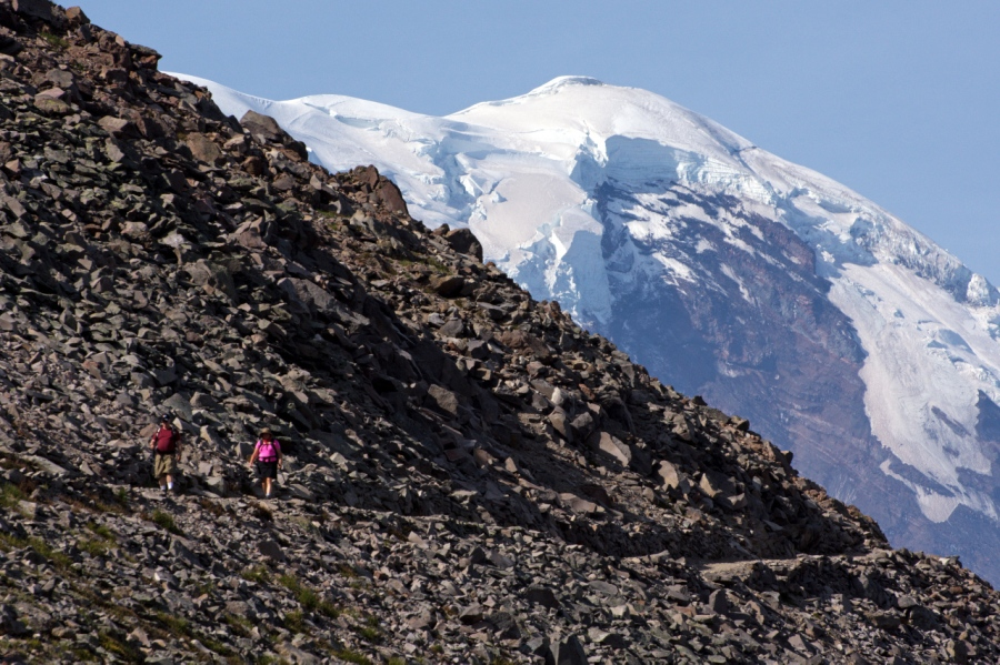 Hikers comings down from First Burroughs with Mt. Rainier above