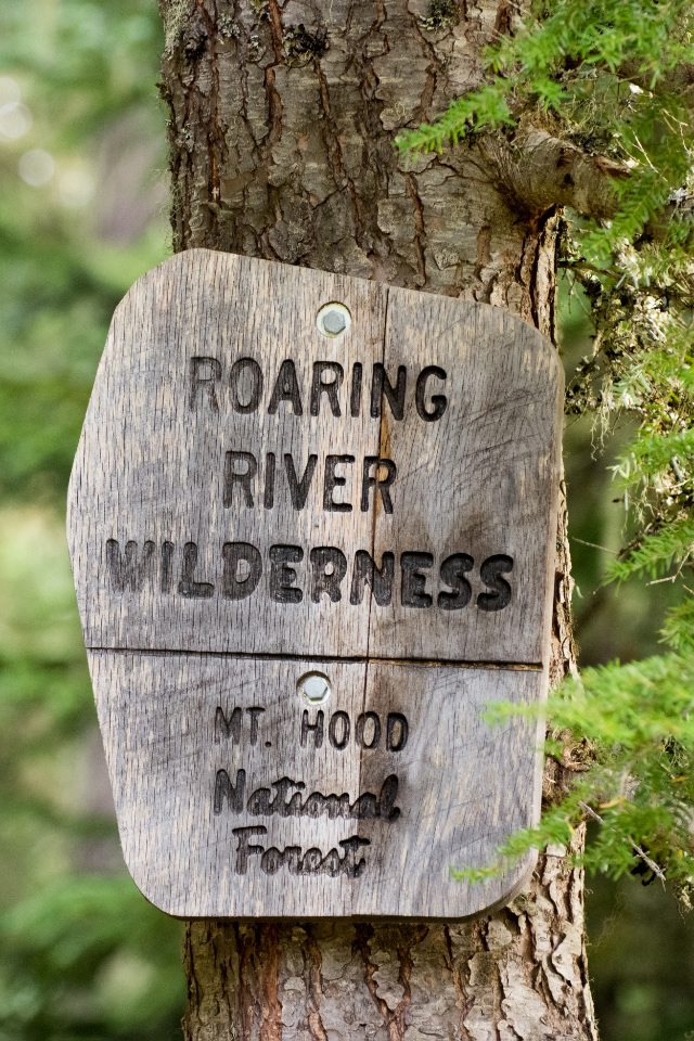 Signs of Fall in the Roaring River Wilderness