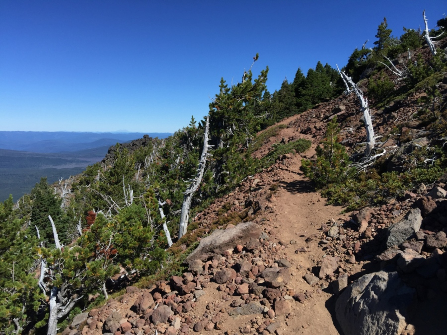 The upper trail ascending through the volcanic rock and Whitebark Pines
