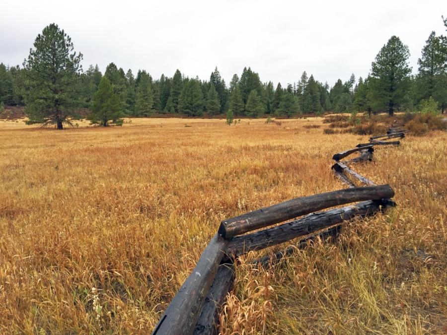 Prairie Farm on Green Ridge