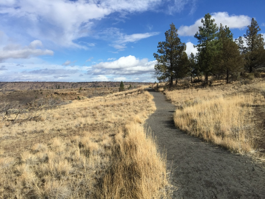 Hiking path above Lake Billy Chinook