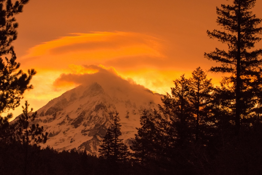 Alpenglow on Mt. Hood near the trailhead