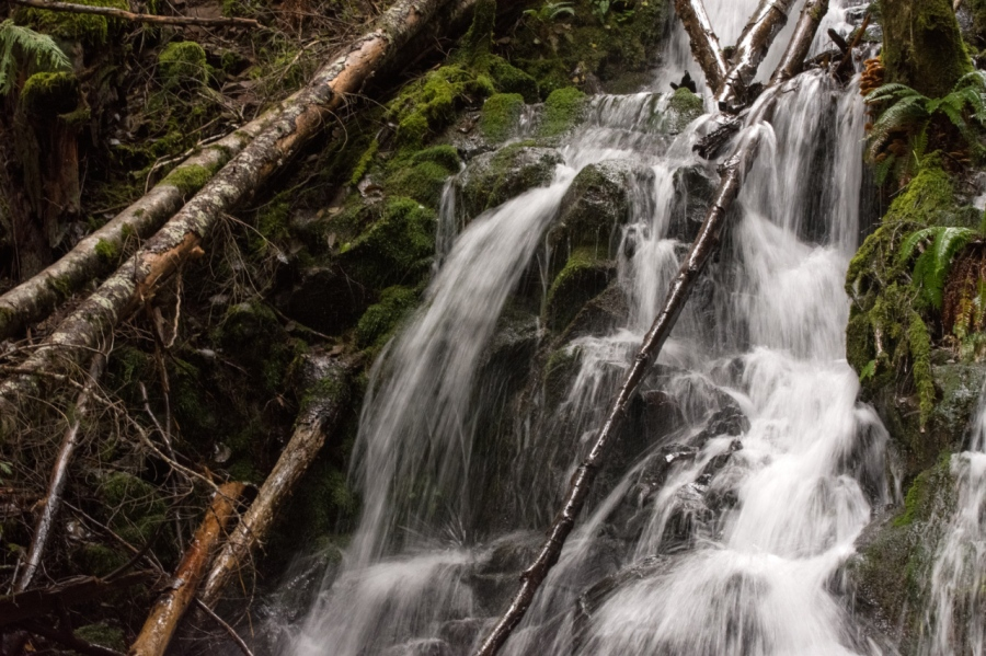 One of several waterfalls along the trail