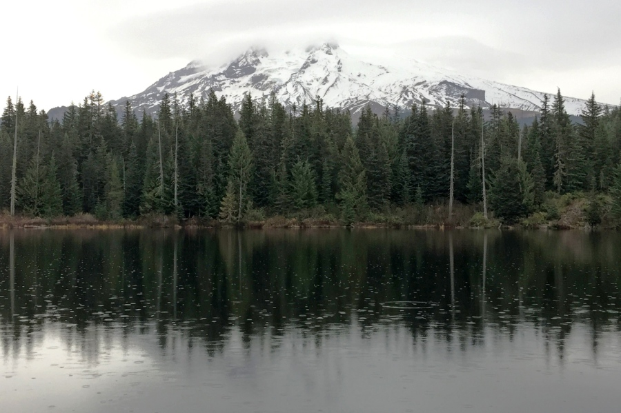 Mt. Hood over Burnt Lake