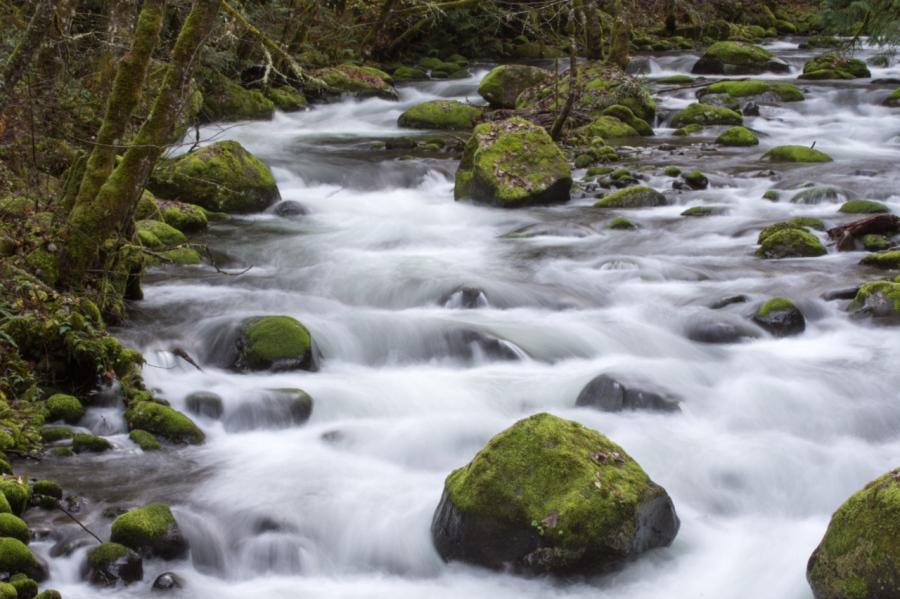Herman Creek