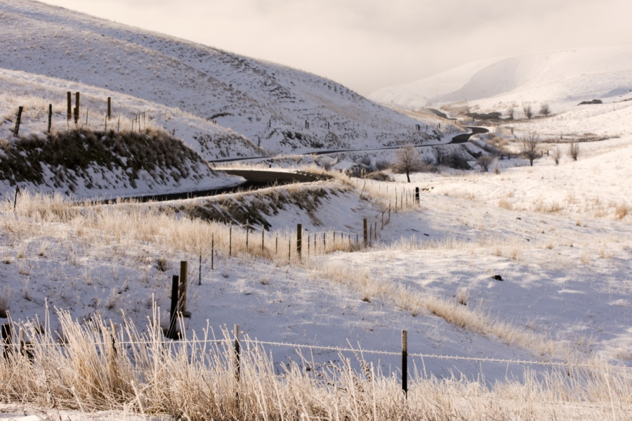 The road to The Dalles Mountain Ranch