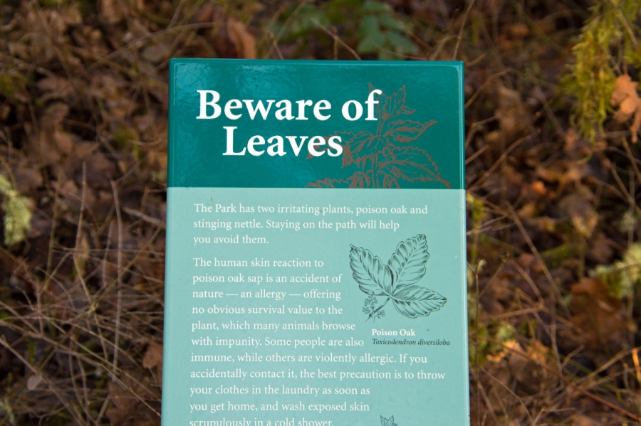 Some parks warn of bears, and some warn of leaves