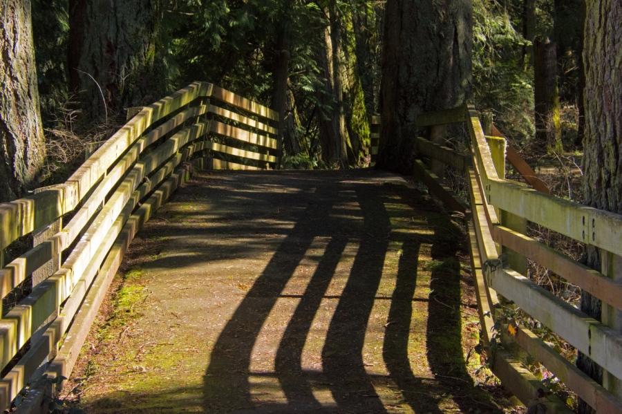 Footbridge over Champoeg Creek