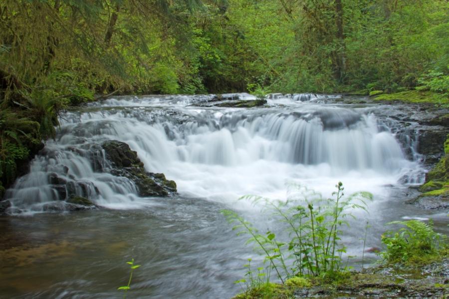 Gnat Creek's Barrier FallsHike