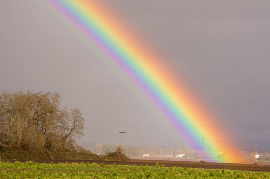 The End of theRainbow