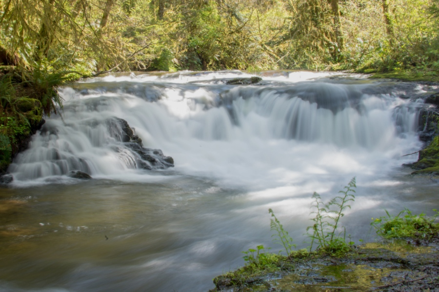 Gnat Creek's BarrierFalls