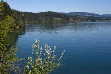Henry Hagg Lake