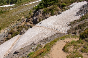 Alpine trail leading down from McNeil Point