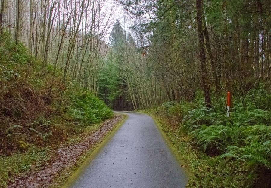 Hiking a Coastal Mountains' Rail-Trail