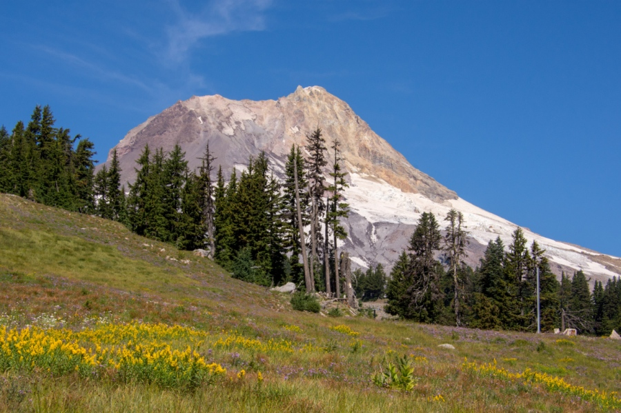 Mt. Hood's Timberline Trail Revisited