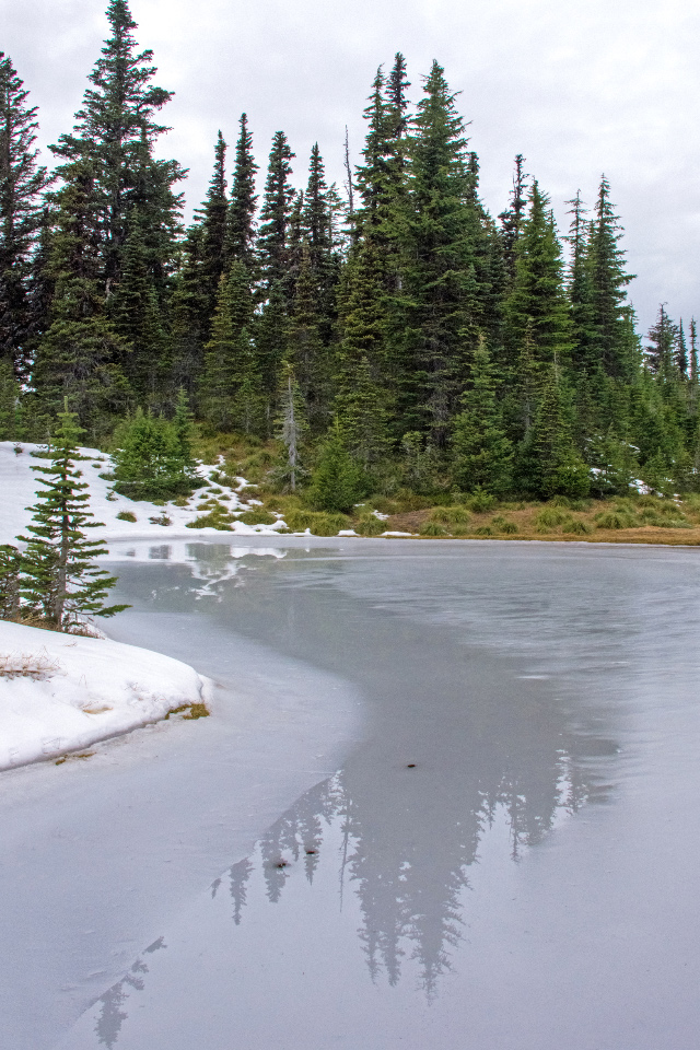 A Beautiful Autumn Hike to the Tarns below McNeil Point on Mt.Hood