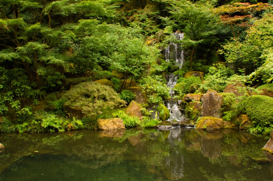 A Mid-Summer Visit to the Portland Japanese Garden