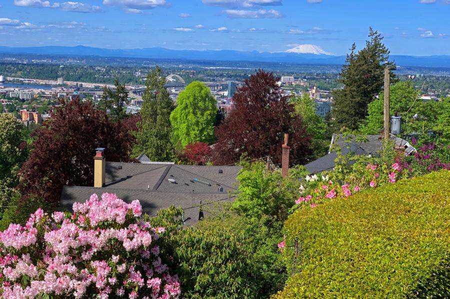 Springtime in PortlandHeights
